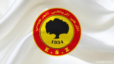 Logo ESZ