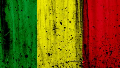 Photo de [CAN 2019] : Focus sur le Mali